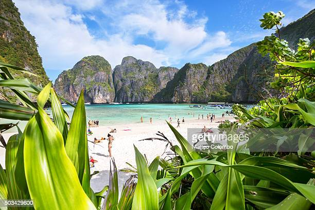 Maya bay tropical beach crowded with tourist, Ko Phi Phi, Thailand