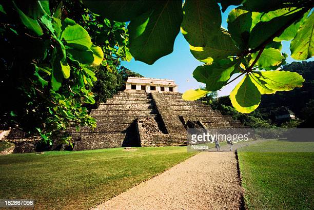 maya temple - mexican god stock pictures, royalty-free photos & images