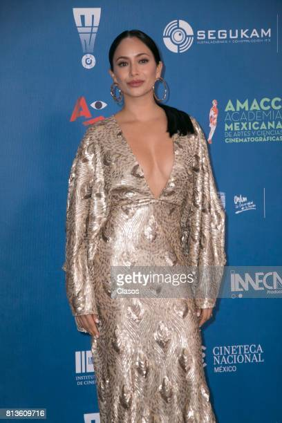 Maya Zapata poses during during the 59th Ariel Awards Red Carpet at Palacio de Bellas Artes on July 11 2017 in Mexico City Mexico