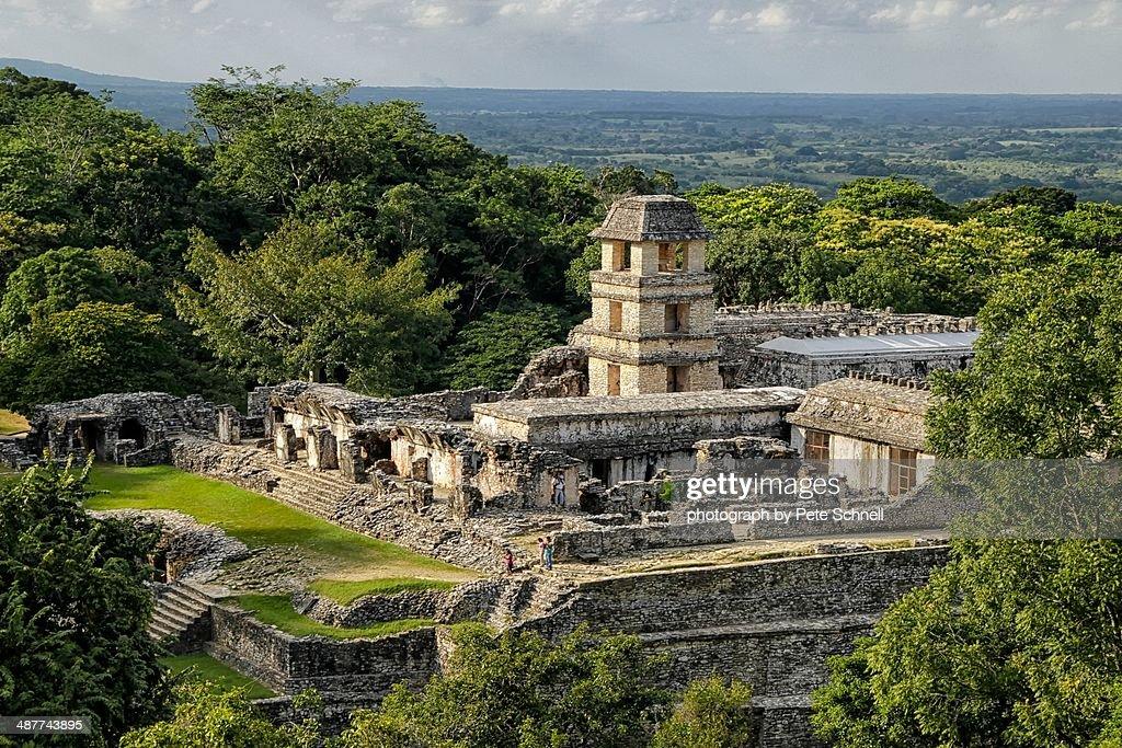 Mayan palace at Palenque, Mexico : Stock Photo