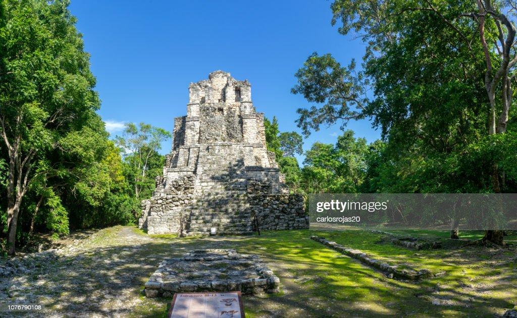 Mayan pyramid in Muyil : Stock Photo