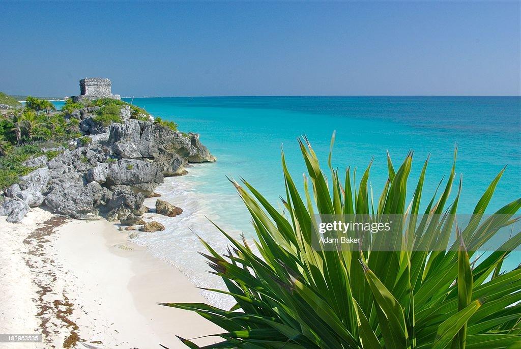Mayan Ruins at the Beach in Tulum : Stock Photo
