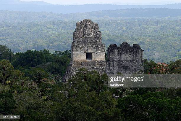 Mayan Ruins in Jungle