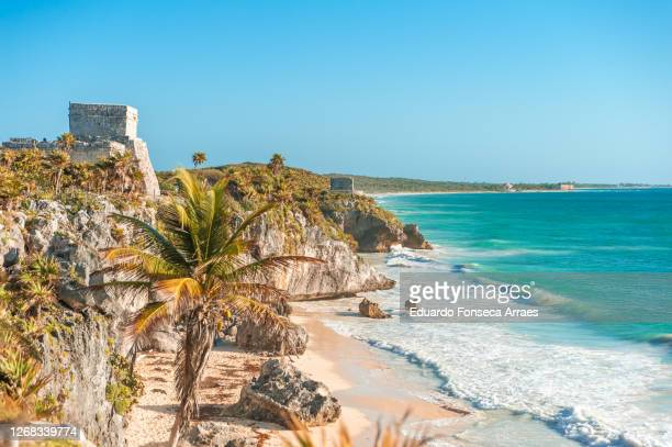 mayan ruins on top of a promontory, near a beach with palm trees, around rocks and tropical vegetation, in front of the caribbean sea with the morning sunlight - front view photos et images de collection