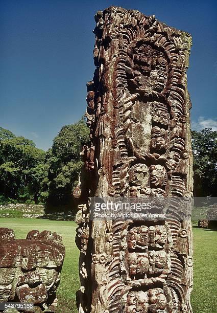 mayan stela - victor ovies fotografías e imágenes de stock