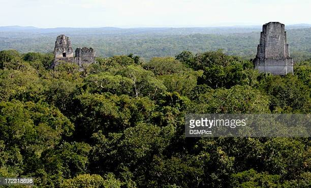 Templo ruinas mayas de Tikal