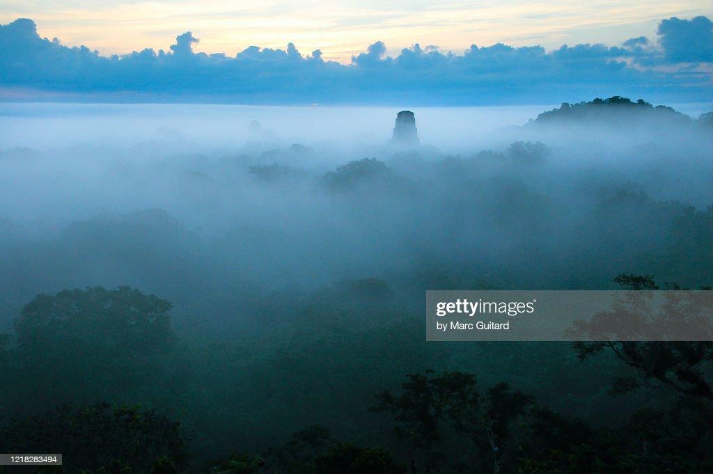Mayan Temples rising out of the morning mist, Tikal, Guatemala : Foto de stock