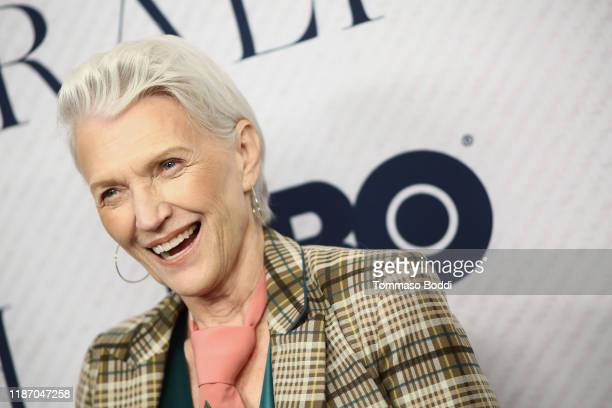 Maye Musk attends the Premiere Of HBO Documentary Film Very Ralph at The Paley Center for Media on November 11 2019 in Beverly Hills California