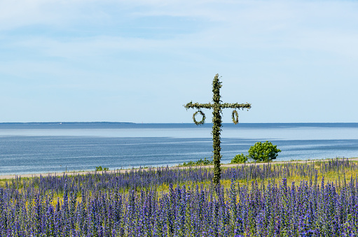 Maypole in a blossom blue field by the coast in Sweden 1166356889