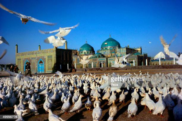 1990 Mazare Sharif Afghanistan The town of MazareSharif in Afghanistan is the most important pilgrimage center in the country Afghans believe it to...