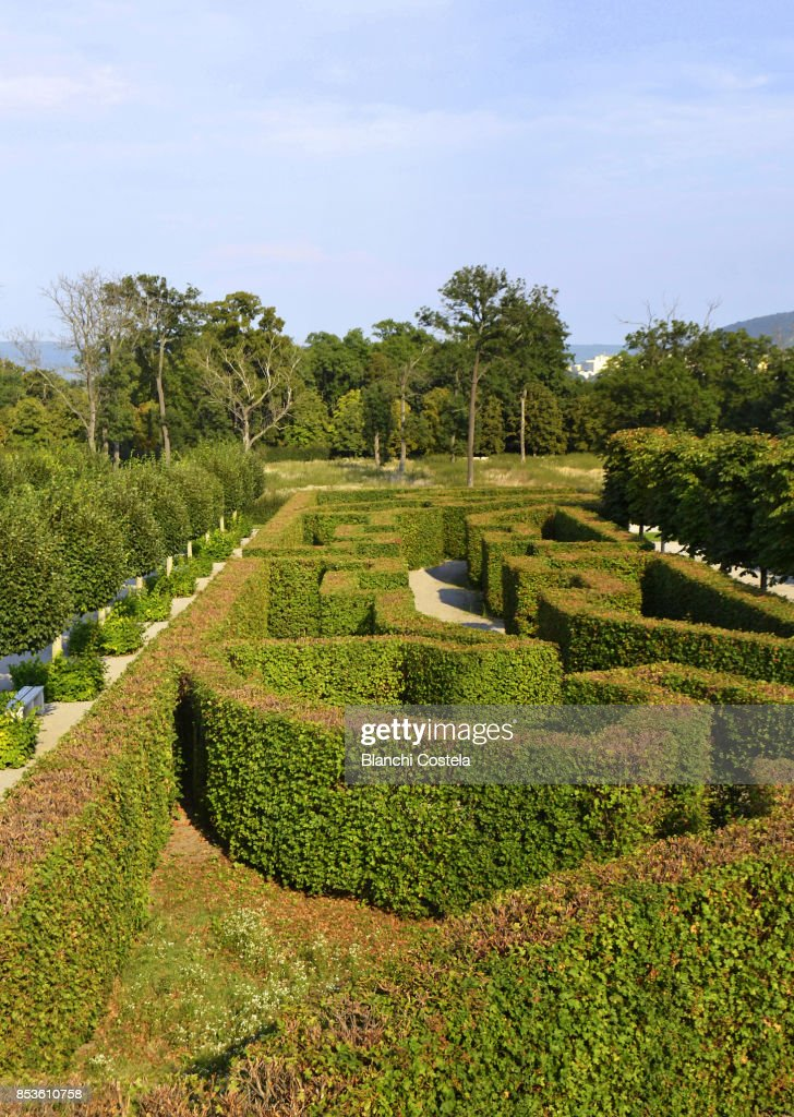 Maze In The Gardens Of Schloss Hof In Vienna Stock Photo | Getty Images