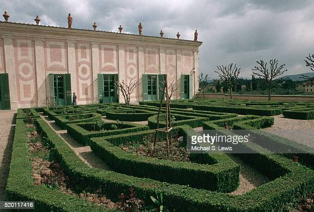 maze of shaped hedges - pitti foto e immagini stock