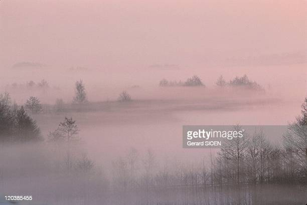 Mazury in Poland in 1980 Fog over Lake Wigry