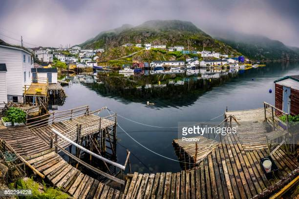 mccallum - newfoundland and labrador stock pictures, royalty-free photos & images