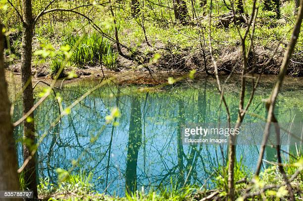 McConnell Springs in Lexington, Kentucky, USA, the original site for the pioneer settlement, This particular spring is called the blue hole, due to...