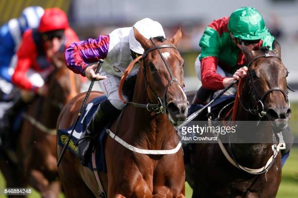 McDonald riding Laurens win The William Hill May Hill Stakes at Doncaster racecourse on September 14 2017 in Doncaster United Kingdom