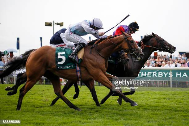 McDonald riding Montaly win The Weatherbys Hamilton Lonsdale Cup from Dartmouth at York racecourse on August 25 2017 in York England