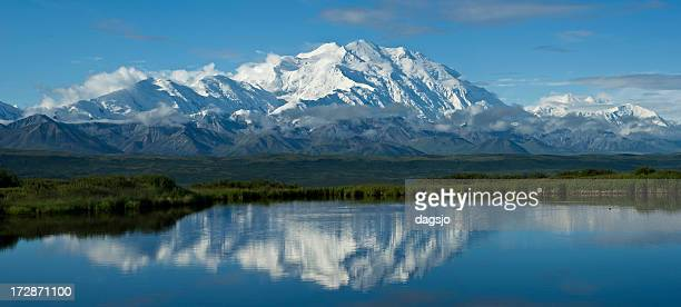 mckinley panorama - mt mckinley stock photos and pictures