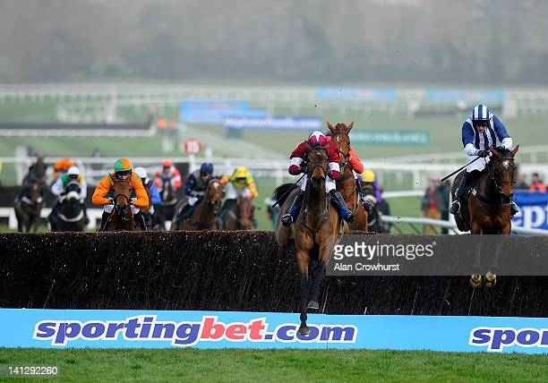 McNamara riding Teaforthree clear the last to winThe Diamond Jubilee National Hunt Steeple Chase on ladies day during day two of the Cheltenham...