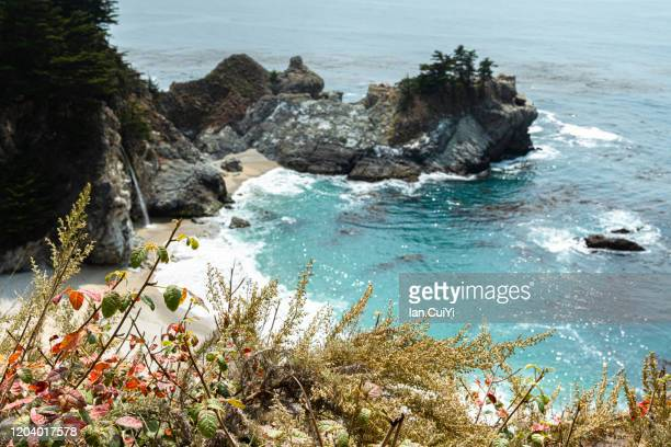 mcway falls in big sur, exploring california's central coast charms, the rugged big sur coastline along highway 1, between carmel highlands and big sur, monterey county, california usa. (day) - mcway falls stock pictures, royalty-free photos & images