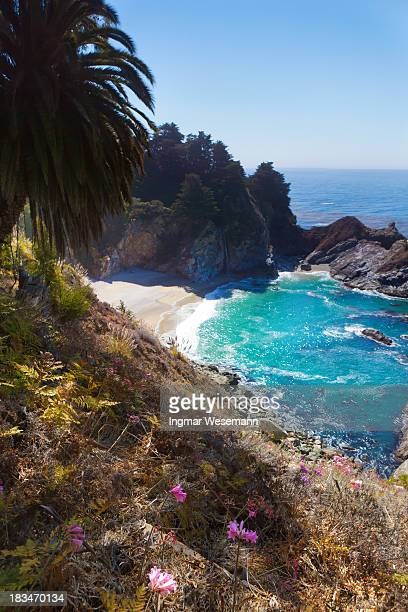 mcway waterfall with small cove - mcway falls stock pictures, royalty-free photos & images