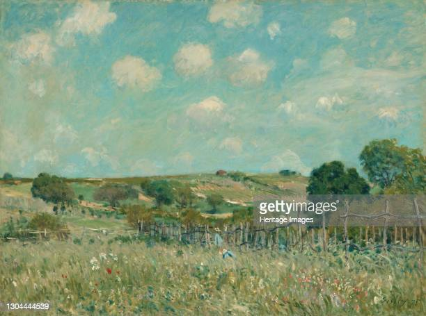 Meadow, 1875. Artist Alfred Sisley.