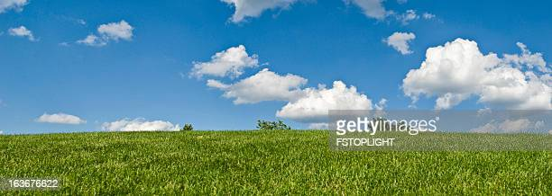 meadow and clouds - fstoplight stock photos and pictures