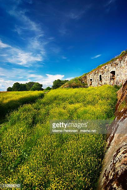 Meadow and old fortifications in Suomenlinna