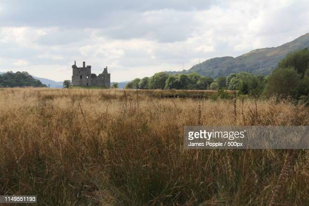 meadow and old ruins of castle - james popple stock photos and pictures