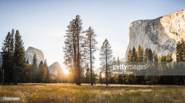 meadow and rock formations at sunset, yosemite national park, california, usa - yosemite valley stock photos and pictures