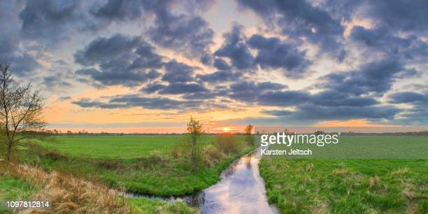 meadow, ditch, willow, floegeln, cuxhaven, lower saxony, germany - moat stock pictures, royalty-free photos & images