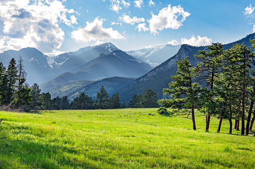 Meadow in Rocky Mountain National Park 858733340
