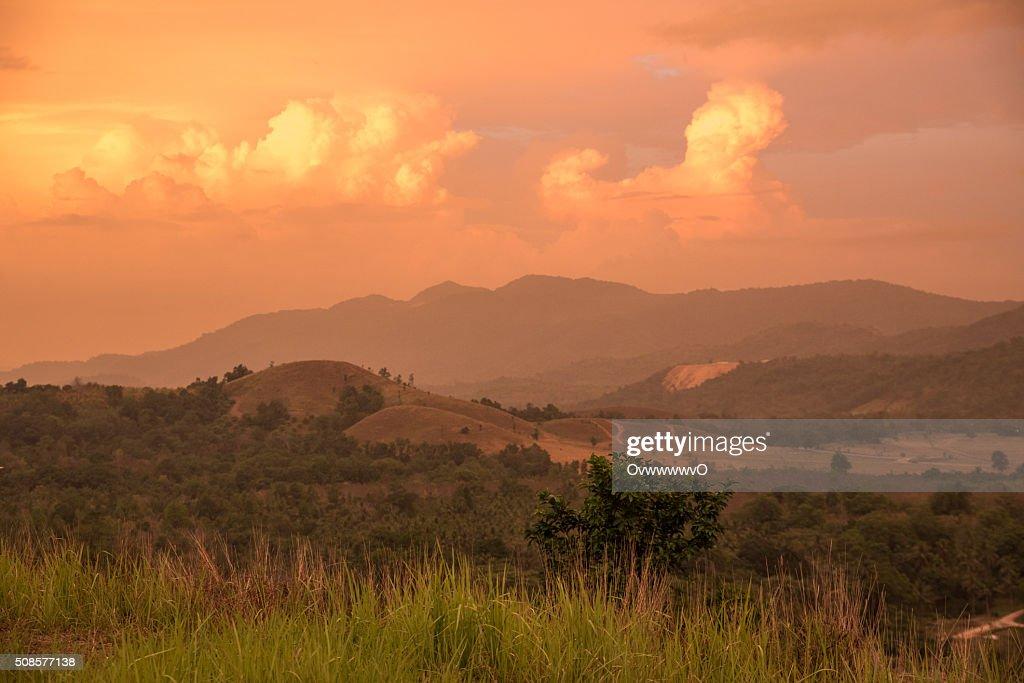 Meadow mountain. : Stock Photo