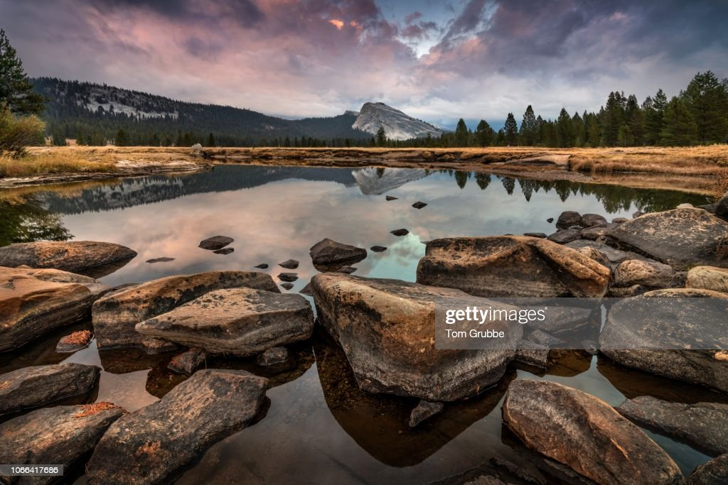 Meadow River I : Stock Photo