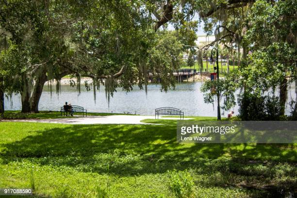 meadow with benches overlooking lake - orlando florida stock pictures, royalty-free photos & images
