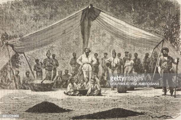 Meal in a tent after the coffee harvest on a Brazilian plantation drawing by Alphonse de Neuville from a photograph from A Journey in Brazil 18651866...