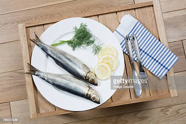 Meal of fish on a tray