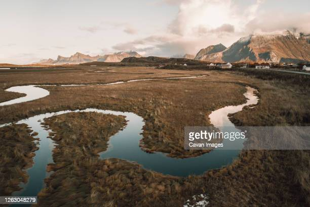 meanders at the mouth of a river in the lofoten islands - tundra stock-fotos und bilder