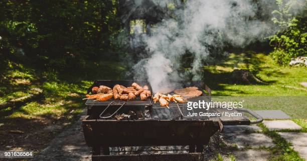meat on barbecue grill in in yard - grill concept stock photos and pictures