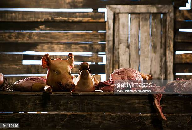 Meat pieces on a table in a slaughterhouse, Kiev, Ukraine
