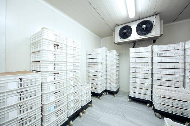 refrigerated cold storage