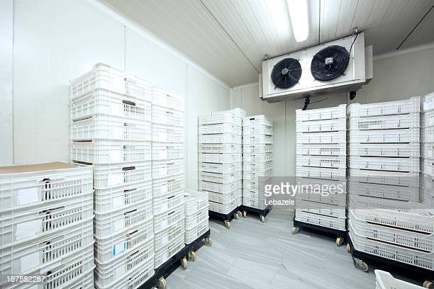 meat storage at -30 celcius - cold temperature stock pictures, royalty-free photos & images