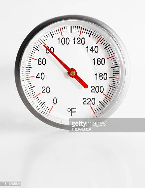 meat thermometer in 80