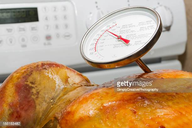 Meat Thermometer in Turkey
