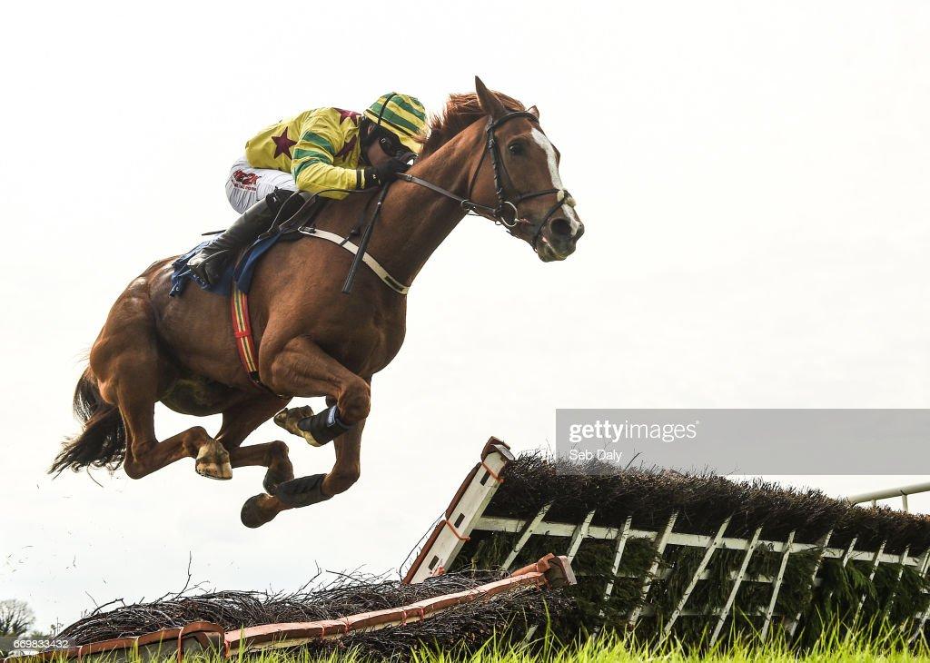 Best Of Horse Racing in 2017