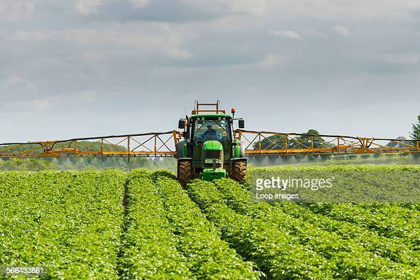 Mechanised spraying of commercial potato crop against blight