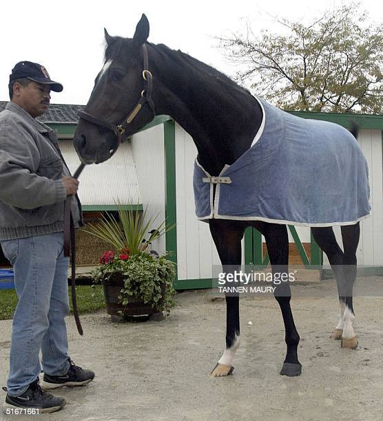 Medaglia D'oro stands with a groom outside the stable for the Breeders Cup 25 October 2002 at Arlington International Racecourse in Arlington Heights...