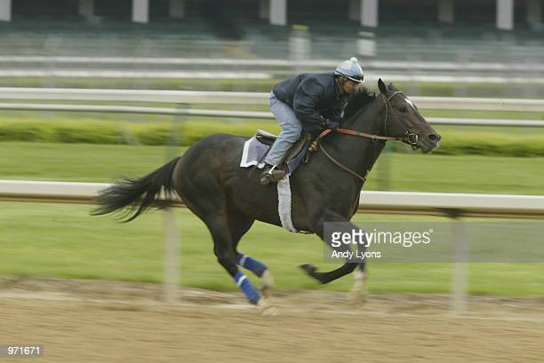 Medaglia d'Oro with rider Jose Cuevos during training on April 27 2002 at Churchill Downs in Louisville Kentucky the site of the 128th Kentucky Derby...