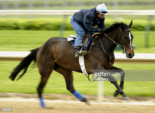 Medaglia d'Oro with rider Jose Cuevos on the track on April 29 2002 at Churchill Downs in Louisville Kentucky the site of the 128th Ketucky Derby...