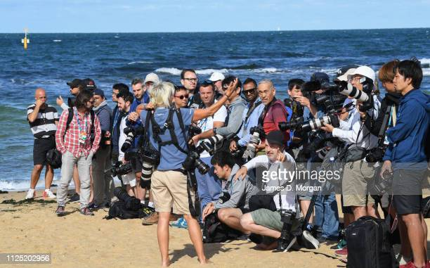 Media take over the beach awaiting the arrival of Naomi Osaka of Japan to pose with the Daphne Akhurst Memorial Cup during the Women's Australian...